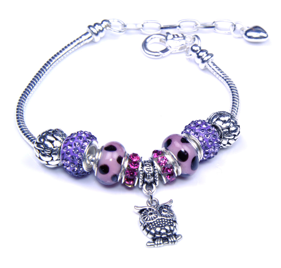 Pandora Style Sterling Silver Murano Glass Charms with European Style Bracelet - Smart Owl