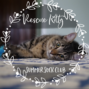Rescue Kitty Summer Sock Club