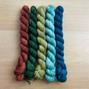 Take A Hike Mini Skein Set