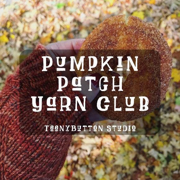 November 2020 - Pumpkin Patch Yarn Club