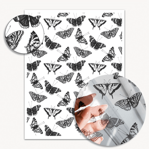 ⚬ Butterflies Acetate