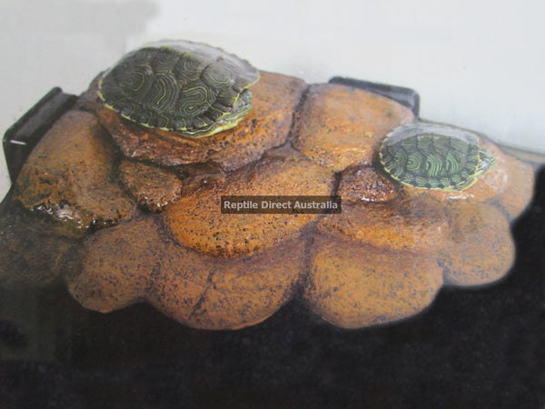 Magnetic Turtle Bank Small