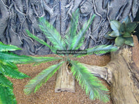 Artificial Cycad Palm 50cm
