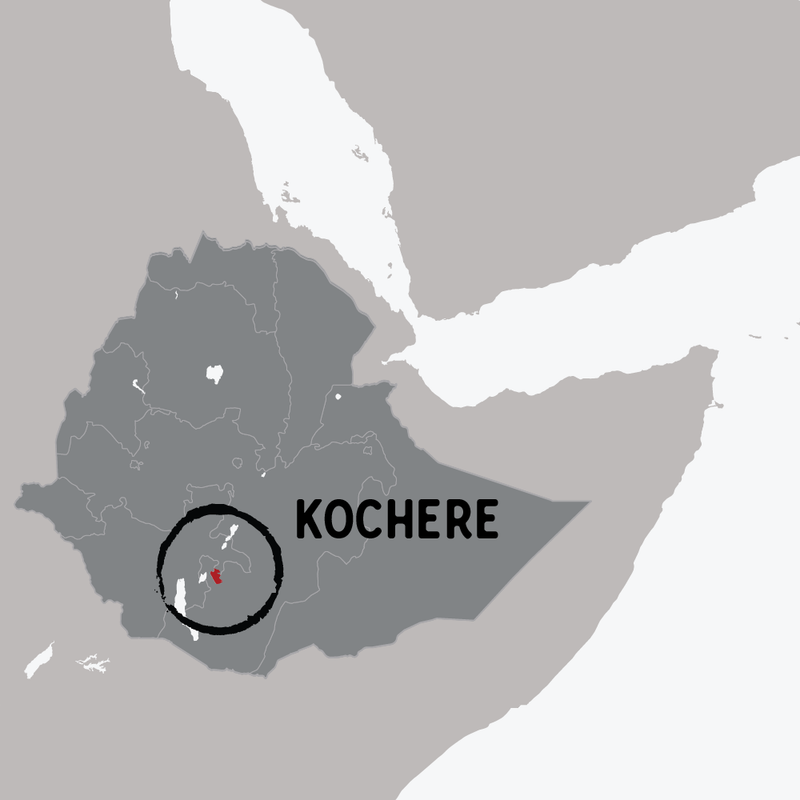 Ethiopia Kochere Washed RAW Coffee Company - Traceable world map