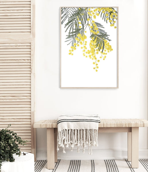 Wattle print art prints australia