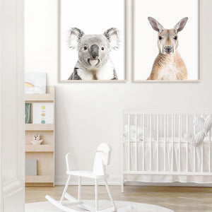 australian animal nursery prints koala kangaroo