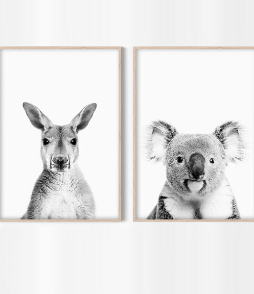 australian animal nursery prints kangaroo art koala art
