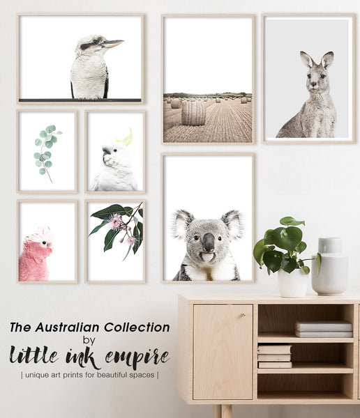 australian animal wall art australian bird art print