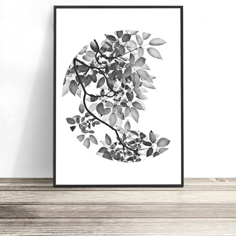 modern botanical print black and white