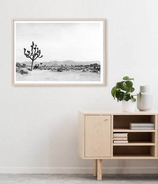 black and white desert print joshua tree art