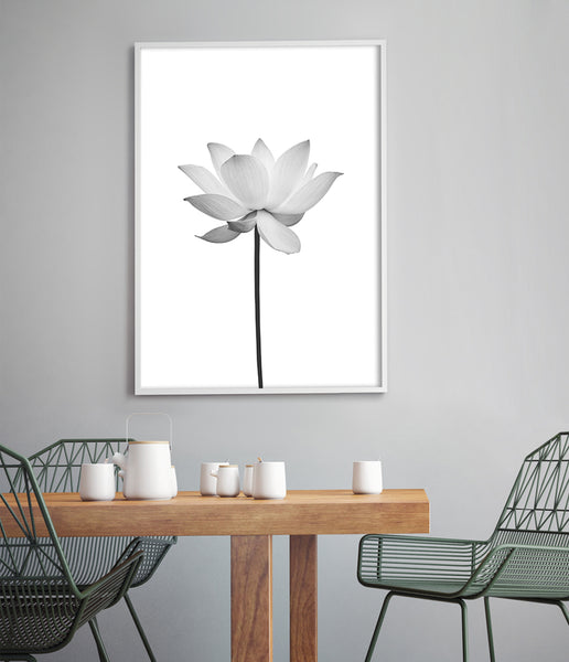 black and white flower prints australia