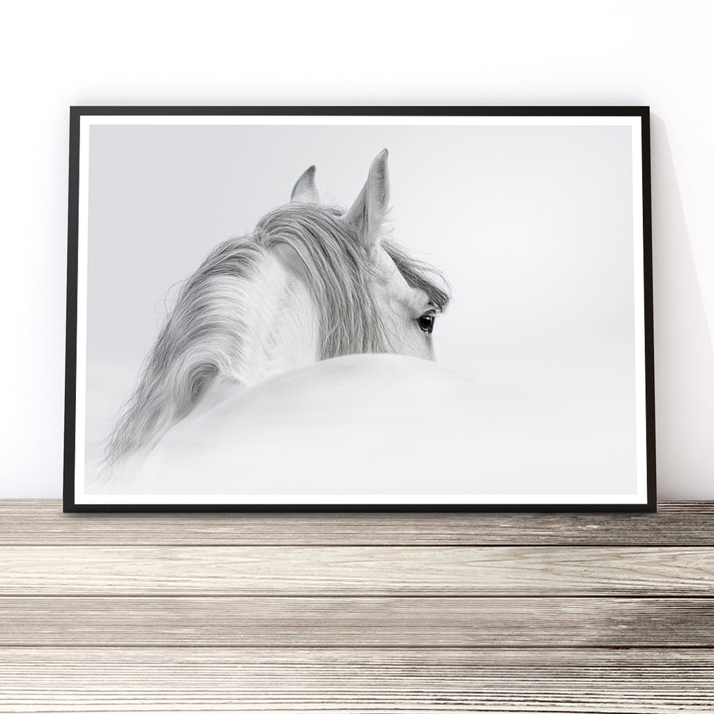White Horse Photography Print Little Ink Empire