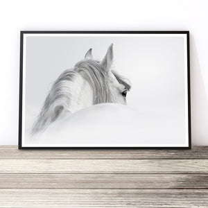 black and white horse prints