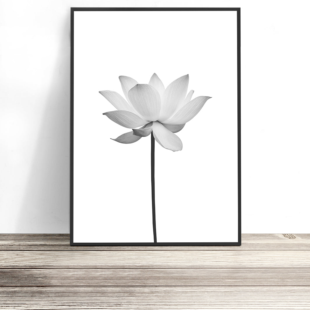 black and white lotus flower print