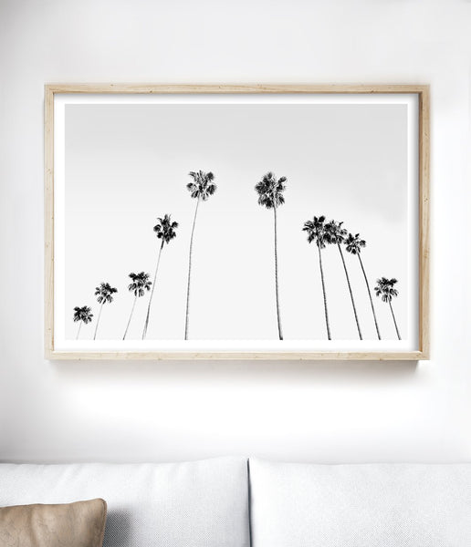 black and white palm tree print coastal wall art beach house wall art