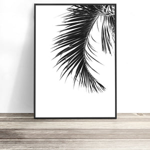black and white tropical print palm leaf wall art