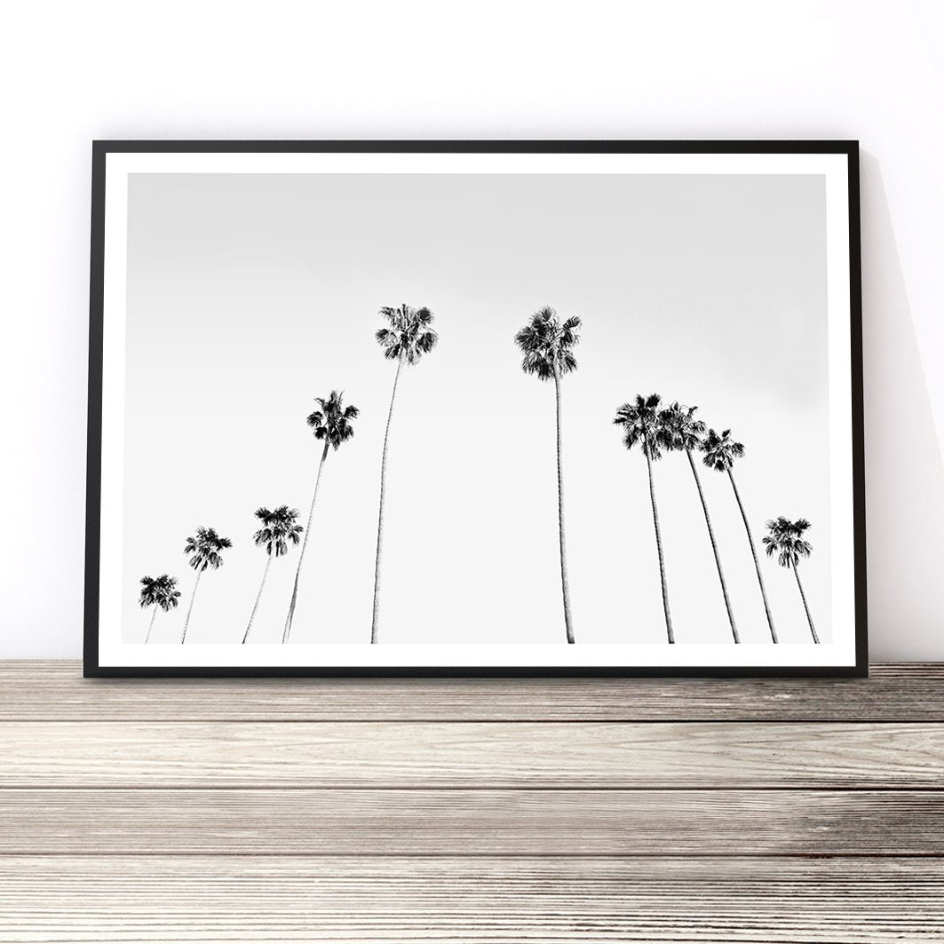 black and white tropical print palm tree wall art palm print