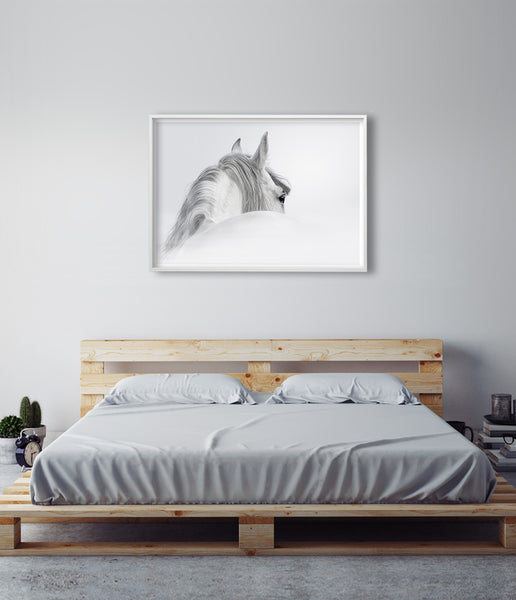 art above bed horse photography