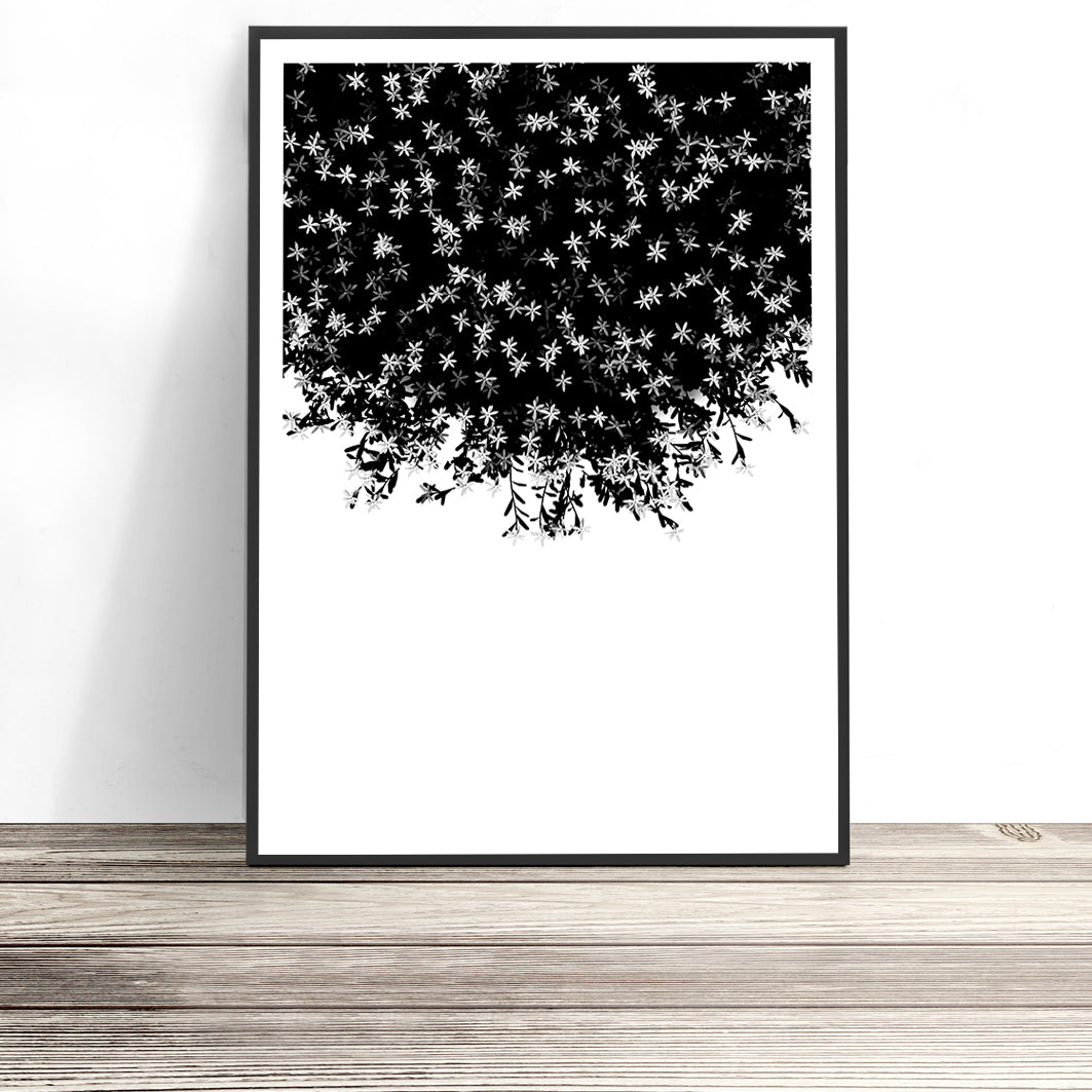 blossoms flower print botanical art print