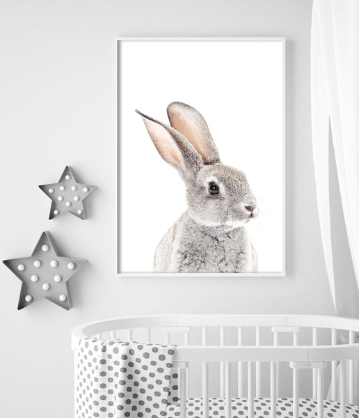 bunny prints for nursery australia rabbit art