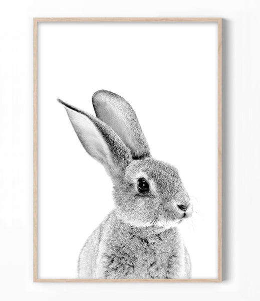 bunny rabbit wall art nursery bunny pictures