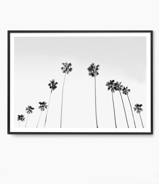 california palm tree print tropical wall art coastal art print