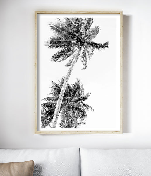 coastal palms print tropical print