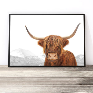 colour highland cow art print