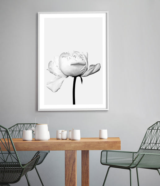 flower art print peony wall art rose prints