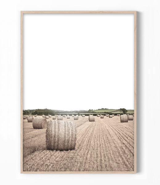 hay bale print farmhouse print australian country photography