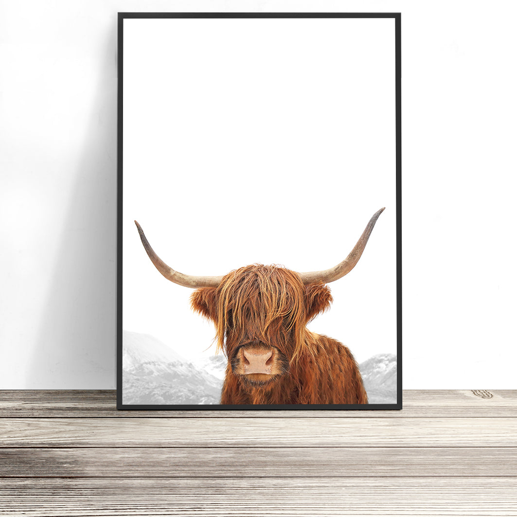 portrait of a highland cow print