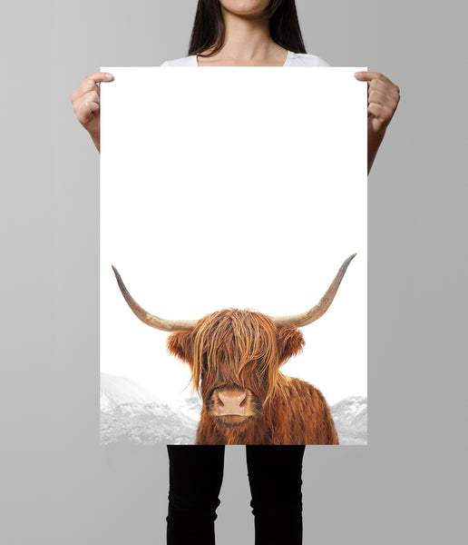 highland cow artwork portrait