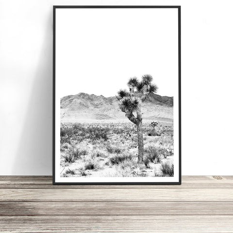 joshua tree print black and white print