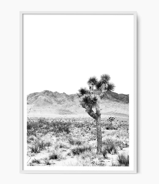 joshua tree art print black and white desert print