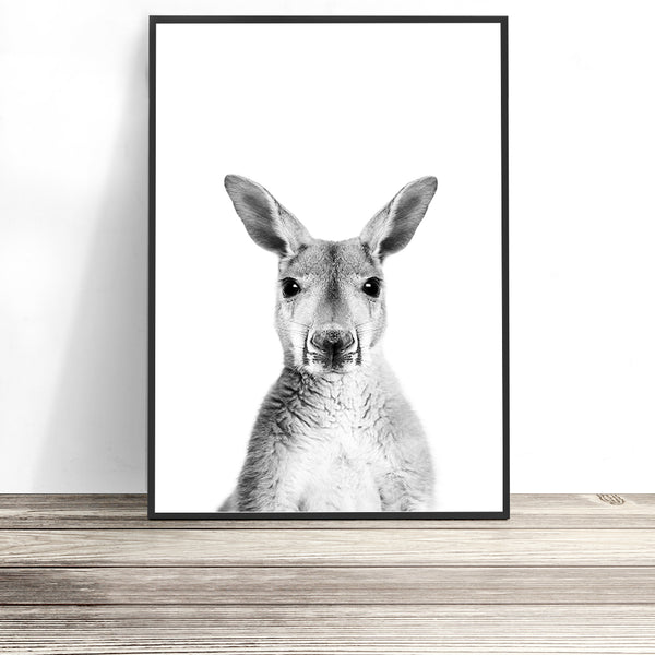 kangaroo art native australian animal prints