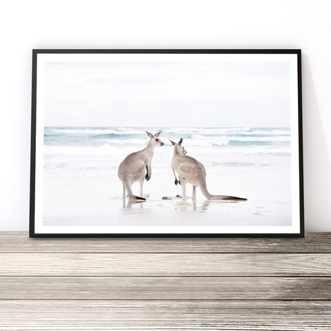 kangaroo art print australian animal prints