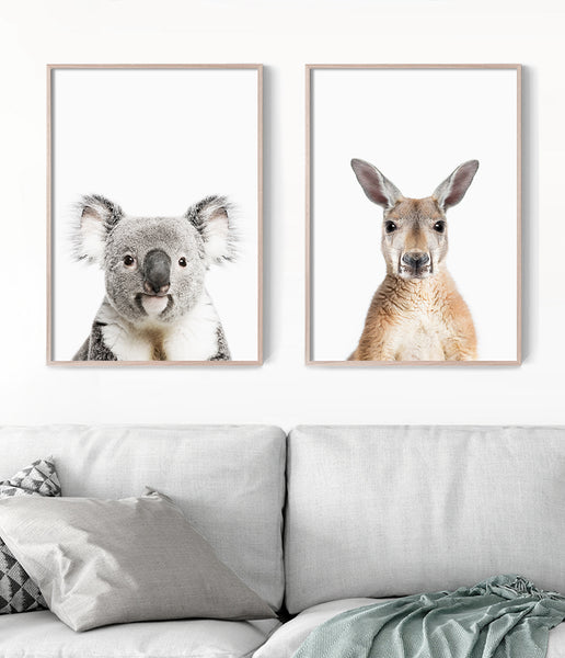 kangaroo artwork