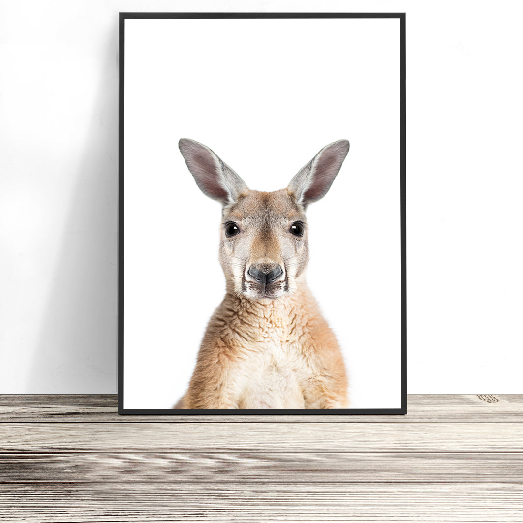 kangaroo print native australian animal art