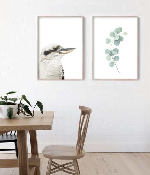 kookaburra artwork australian animal art