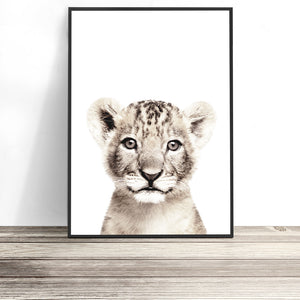 colour lion cub print baby animal nursery print
