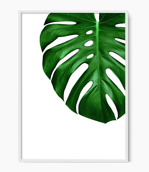 monstera leaf print tropical leaf print