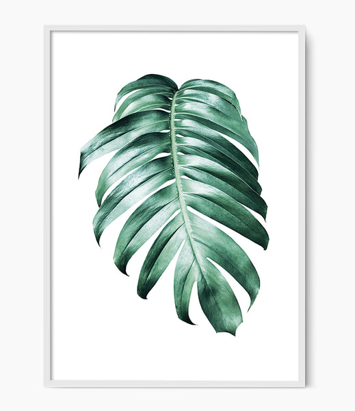 monstera print tropical wall art