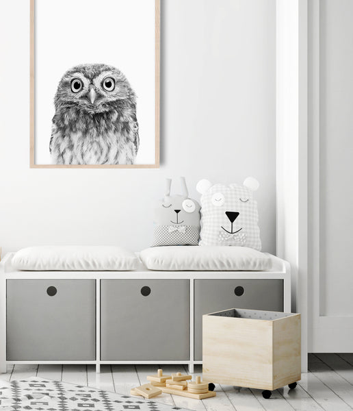 owl print kids room wall art boys