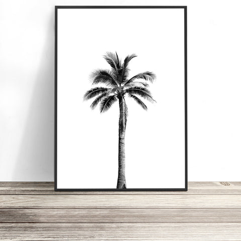 black and white palm tree art