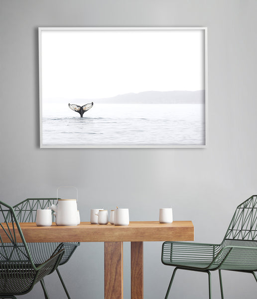 whale photography print whale tail print australia