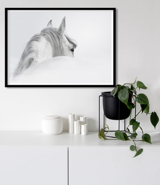 black and white horse art