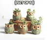 Image of Cute Owl Shape Plant Flower Pot ( Set of 5 )