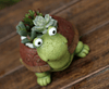 Image of Cute Turtle Plant Flower Pot