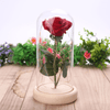 Image of Romantic Rose In Bottle