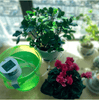 Image of Automatic Drip Irrigation Kit, Self Watering System with Timer